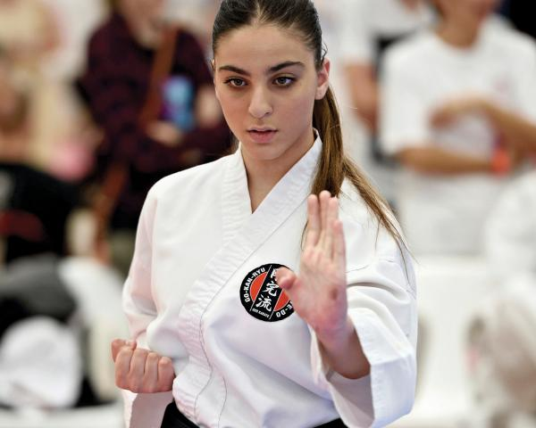 Free Trial Class! Eltham North Karate Clubs _small