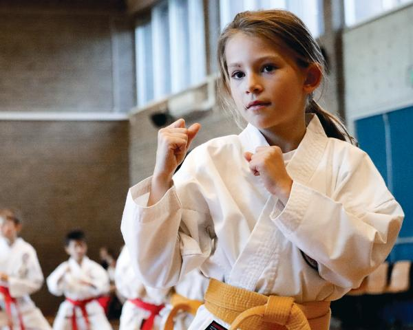 Free Trial Class! Cranbourne Karate Clubs _small