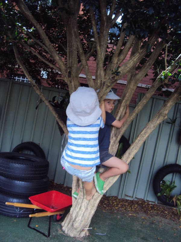 Children are free to explore the outdoor environment. Resillience is buitl through children taking risks in their play.